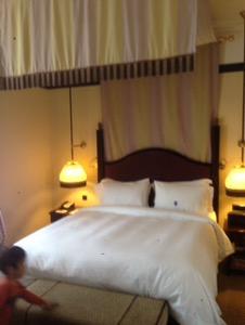 オランダ デン・ハーグの最高級ホテルDes Indes宿泊記ベッド