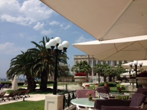 ホテルチュラーン・パレス・ケンピンスキー・イスタンブールスズメが近寄ってきた